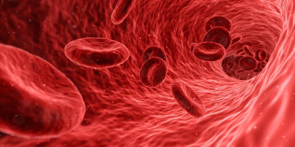 blood-1813410_1920-1200x600-1200x600.jpg