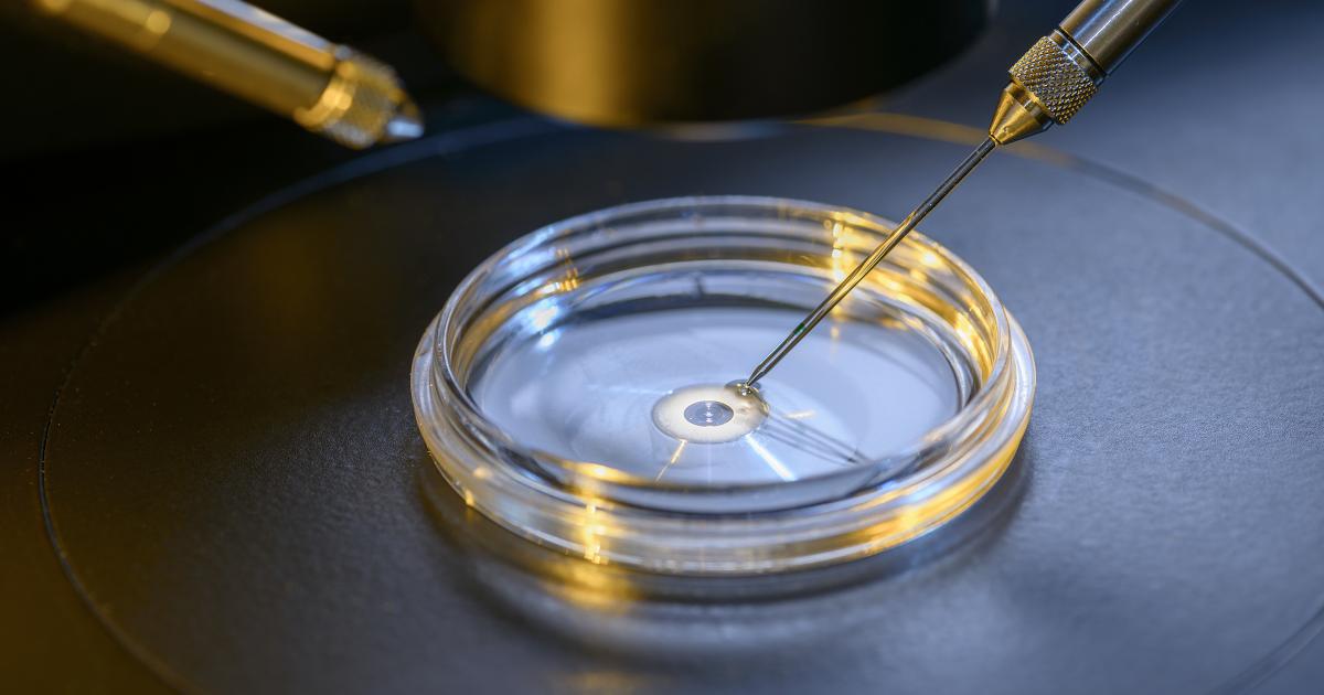 lab-grown-human-egg-cells1-1200x630-1200x630-1200x630.png