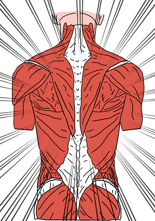 back-pain-3769360_960_720.png